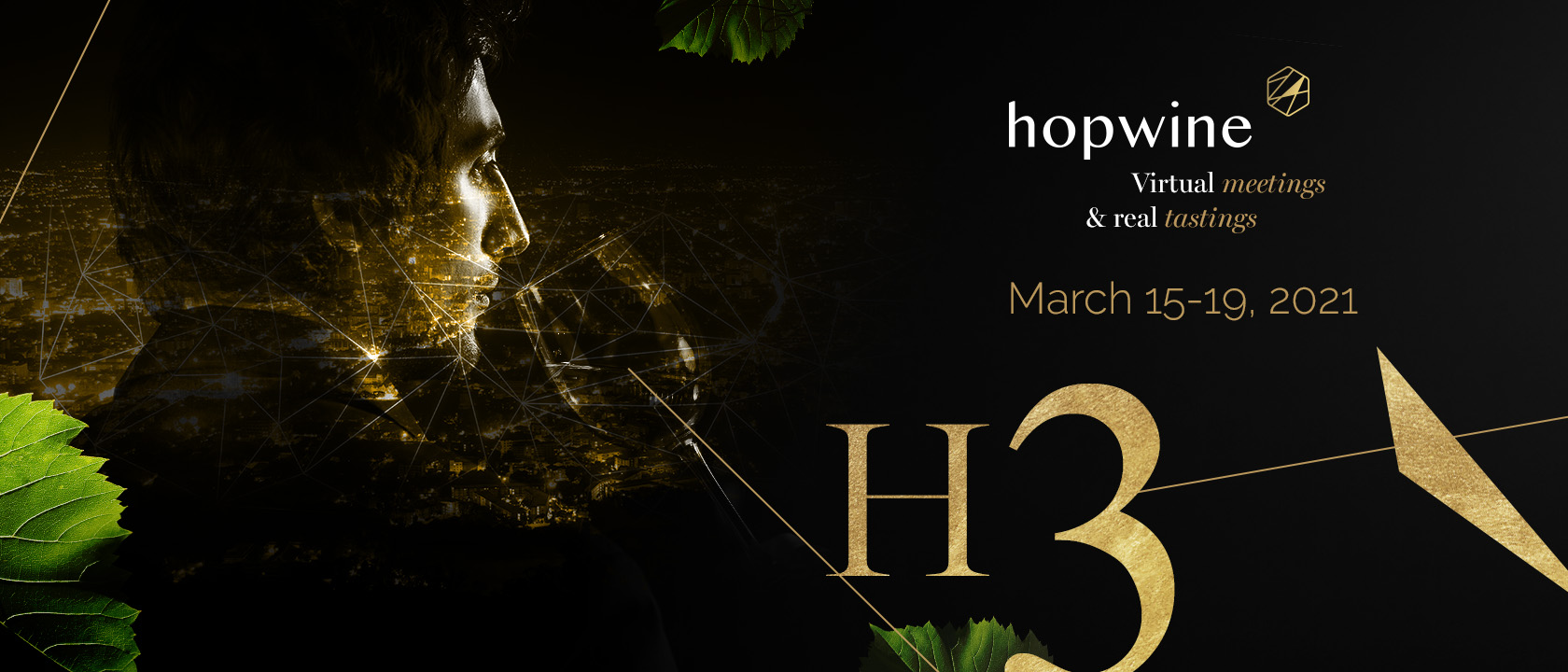 Hopwine H3 - Open to all wine and spirits